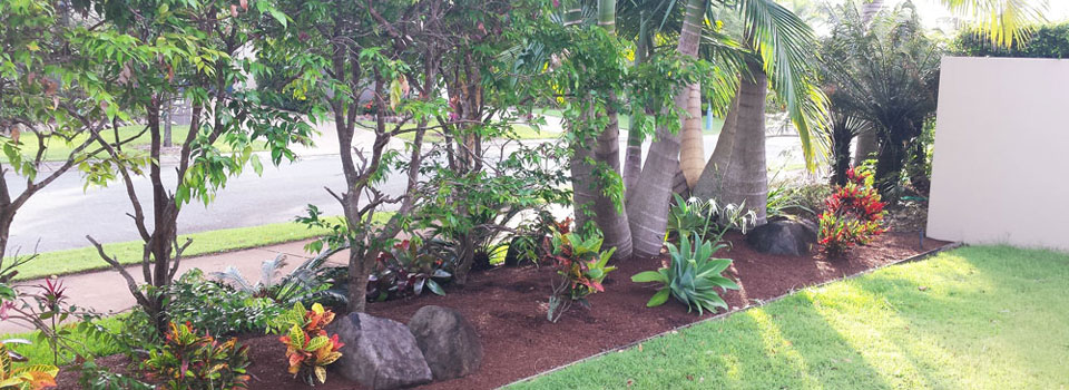landscaping-peregian-springs